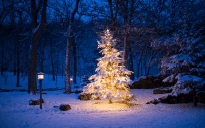 Jak přežít Vánoce s narkolepsií i bez ní